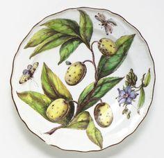 A CHELSEA PORCELAIN 'HANS SLOANE' BOTANICAL PLATE CIRCA 1755