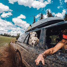 @loki_the_wolfdog loves driving with the windows down and hanging with his best buds, even while off-roading through the mud in the Aquarius Plateau in Utah @GoPro