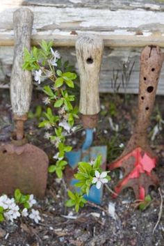 Love old garden tools. Don't throw them out. Let them live out their life where they made beauty come to life.