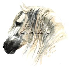 Gallery For > Colorful Horse Head Painting