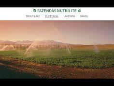 Nutrilite Reportagem : Fazenda Petacal-México