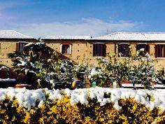 Snowy Mutari