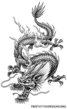 ideas for tattoo dragon phoenix drawings chinese dragon tattoo ideas for tattoo dragon phoenix drawings Tattoo Dragon And Phoenix, Phoenix Drawing, Chinese Dragon Tattoos, Dragon Tattoo For Women, Dragon Tattoo Designs, Chinese Dragon Drawing, Japanese Phoenix Tattoo, Phoenix Tattoos, Orca Tattoo