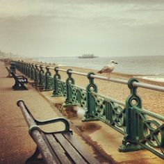 View of the West Pier, Brighton along from Hove seafront