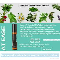 Forever Living is the largest grower and manufacturer of aloe vera and aloe vera based products in the world. As the experts, we are The Aloe Vera Company. Aloe Vera, Aloe Drink, Forever Living Products, Healthier You, Beauty Industry, Health And Wellbeing, Coriander, Aromatherapy, Peppermint