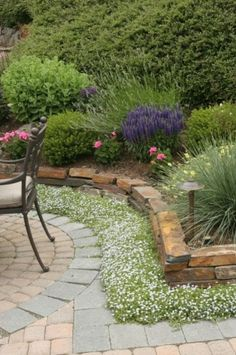 Ground Cover Landscape Front Yard Design Ideas, Pictures, Remodel, and Decor Flower Bed Edging, Front Flower Beds, Garden Edging, Garden Borders, Patio Edging, Circular Patio, Flower Wall, Contemporary Landscape, Landscape Design