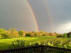Double rainbow near a local vineyard