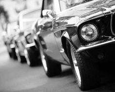 Mustangs in Black Convertible Ford Mustang fleet lined up in Melbourne a wedding - photo by Illy Photography.
