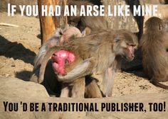 Mainstream publishers often talk out of them...
