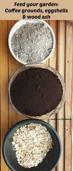 Feed your garden! Using coffee grounds wood ash and eggshells in the garden