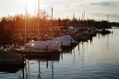 """Annapolis Yacht Club on Spa Creek"" 