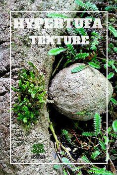 Texturize New Hypertufa – Give It That Aged Look via @hypertufagarden