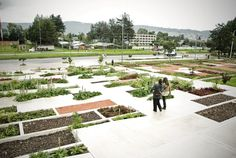 Julio-Mario-Santo-Domingo-Library-Park-02 « Landscape Architecture Works | Landezine