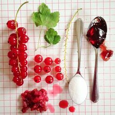 Red Currant Jelly (still life)