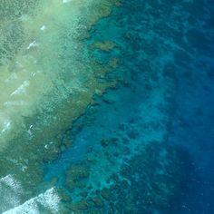 """When you feel life at crossroads you need higher perspective view.""  Toba Beta  _____ Flying over the reef  _____ #ladyelliotisland #greatbarrierreef #southerngreatbarrierreef #visitfrasercoast #ocean #exploreGBR #mermaid #mermaidlife #happiness #gratitude #waterlust #flying #coralreef #instagood #instadaily #ig_australia #queensland #thisisqueensland #seeaustralia #love #canon #canonaustralia #wanderlust #motivation #quote #quoteoftheday #adventure #australia by hawkeeyes…"