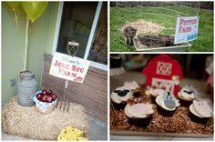 Farmyard Birthday Bash