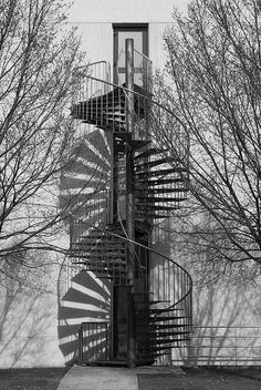 Spiral black and white staircase and shadow stairs White Staircase, Grand Staircase, Stairs To Heaven, Escalier Design, Balustrades, Beautiful Stairs, Take The Stairs, Stair Steps, Interior Exterior
