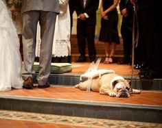 The marriage almost didnt go through, when Walter, the Ringcarrier fell asleep in the aisle <3  via Baggy Bulldogs