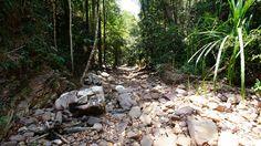 Walking-tour on the way to the Lu Du Waterfall (Koh Tarutao)