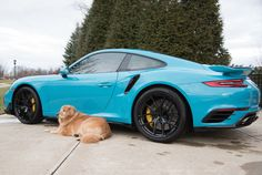 Feeling the winter blues? Maybe this will cheer you up! Our friends at WeaponX Motorsports just equipped Mike's gorgeous Maui Blue 991 Porsche 911 Turbo S with these Forgeline one piece forged monoblock VX1R wheels finished in Gloss Black! See more at: http://www.forgeline.com/customer_gallery_view.php?cvk=1844 #Porsche #991TurboS #Forgeline #monoblock