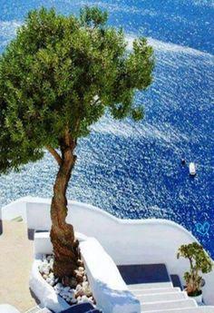 http://gobtube.com nice greece