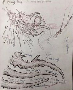 """863 Likes, 4 Comments - InkWorkshops® (@inkworkshops) on Instagram: """"Here is Tony's reference sheet on the horns from our 2nd art tip. Notice the thick, bolded contour…"""""""