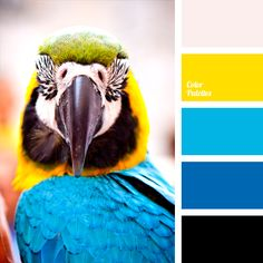Such a bright color combination should be applied in the room facing the warm sunny side, as the palette itself is saturated with cold shades..