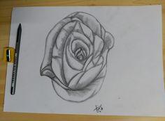 Rosa de grafito. Nada que hacer en la tarde de verano salió algo de práctica