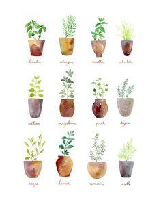 Culinary Herbs Art Print by Sandra Ovono - Watercolor Art Studio | Society6