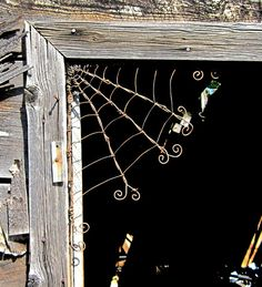 barb wire spider web