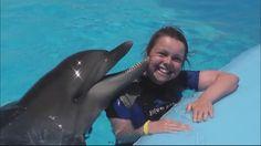 Плавание с дельфинами. #Дельфинарий«Dolphin World» #Египет. #Макади Бей....