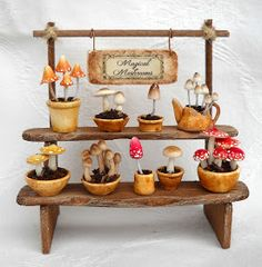 Miniature Plants, Miniature Fairy Gardens, Miniature Food, Miniature Dolls, Fairy Crafts, Garden Crafts, Fairy Furniture, Miniature Furniture, Halloween Miniatures