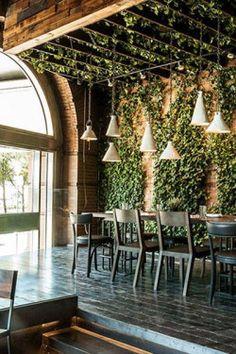 indoor climbing ivy - living green wall - wood panel interior - rustic patio outdoor living decor - interior design - plant inspiration - outdoor living garden decor Δ The Wild Arcadia