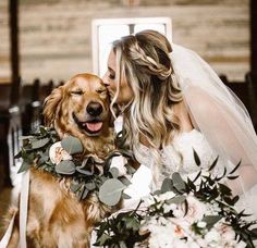 Wedding Pics 30 gorgeous photo ideas of wedding pets for your album! - Some couples want to include pets in their wedding day. Here you find wonderful photo ideas with wedding pets, ideas how to include dog to your wedding. Wedding Goals, Wedding Pics, Wedding Engagement, Wedding Planning, Dogs In Wedding, Wedding Dresses, Outdoor Wedding Pictures, Dog Engagement Photos, Dog Wedding Attire