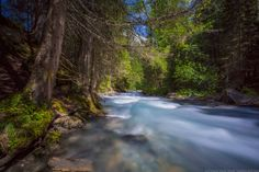 Nationalpark Hohe Tauern 2013-07 by Martin Steinthaler on 500px * #bergwandelen #wandelen #hiking #walking #mountainhiking #bergwandern #wandern #austria #oostenrijk #oesterreich #nationalpark #hohetauern