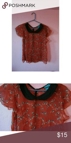 Orange Peter Pan collar blouse Orange Peter Pan collar blouse with owls all over it ⚡fast shipper- shipped within next morning or 2 days after Tops Blouses