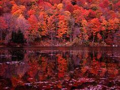 Vermont in Autumn. US