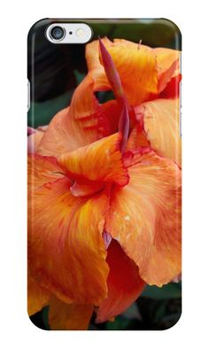 Canna flowers from A Gardener's Notebook by Douglas E.  Welch