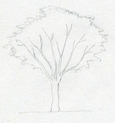 Der Baum selber malen ist gar nicht so schwer, wie manche glauben. Schauen Sie mal diese einfache Anleitung und probieren Sie selber!