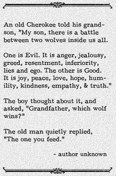 the wolf that wins is the wolf you feed - Google Search