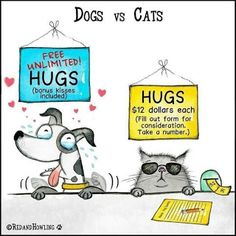 Mystery Fanfare: Cartoon of the Day: Dogs vs Cats I Love Dogs, Puppy Love, Cute Dogs, Animal Memes, Funny Animals, Animal Humor, Cat Quotes, Dog Memes, Funny Dogs