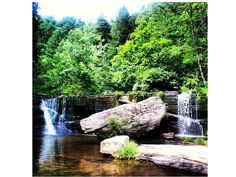 Lower Greeter Falls; Lower Greeter Falls (10 feet) , Upper Greeter Falls (50 feet); Why it's awesome: It's a 2.2-mile loop to see these falls and is a lesser known hiking area so it's not as busy as other falls. Kid and pet friendly; Distance from Nashville: 2 hours on I-24; Located in Altamont, TN; Hiking: Moderate