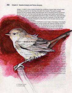 Bird in a Sketch Book