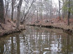 Streams and ponds   Land with streams and ponds.