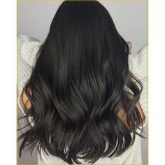 Cool Tone Brown Hair, Dark Ash Brown Hair, Coffee Brown Hair, Brown Hair Shades, Hair Color Dark, Brown Hair Colors, Dark Hair, Black Ash Hair, Darkest Brown Hair Color