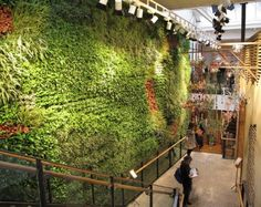Google Image Result for http://inspirationgreen.com/assets/images/Blog-Building/green%2520walls/anthropologie.jpg