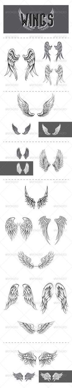 Wings Vector Design — Vector EPS #design #freedom • Available here → https://graphicriver.net/item/wings-vector-design/6496090?ref=pxcr