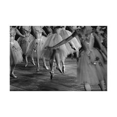 Ribbons, Bows, and Dreaming of Hoes ❤ liked on Polyvore featuring ballet, pictures, dance, photos and people