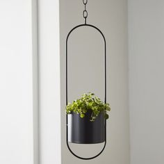 Greenery has never looked so great! Freshen up your interior by displaying your favourite botanical blooms in this futuristic flowerpot. To add an ultra-modern touch to your home or office, fill this useful flowerpot with your favourite herbs and small Wooden Planter Boxes, Window Planter Boxes, Wooden Planters, Indoor Planters, Hanging Baskets, Hanging Plants, Potted Plants, Plastic Plant Pots, Ceramic Plant Pots