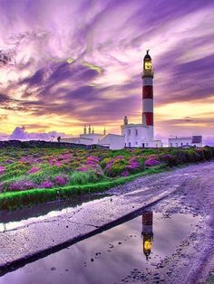 Violet clouds hovering over a lighthouse and purple flowers {dreamy} Beautiful World, Beautiful Places, Beautiful Sky, Stunning View, Lighthouse Pictures, Purple Sky, Purple Flowers, Purple Beach, Deep Purple